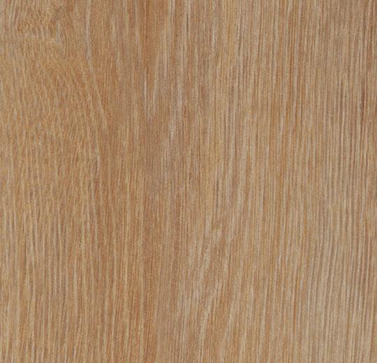 Allura Click cc60295 pure oak 121,2 x 18,7 cm